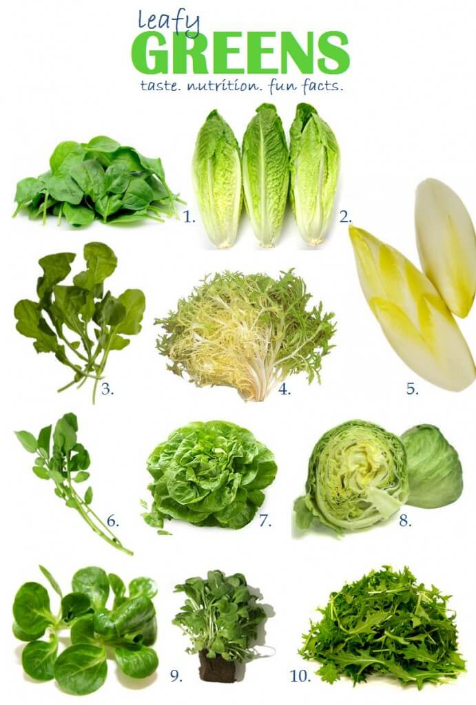 Kinds of Leafy Vegetables Image