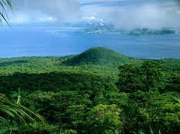 Rain Forests – The Most Populated Forests