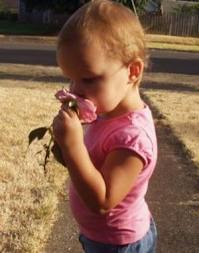 Kid Smelling a Flower Image - Science for Kids All About Your Sense of Smell