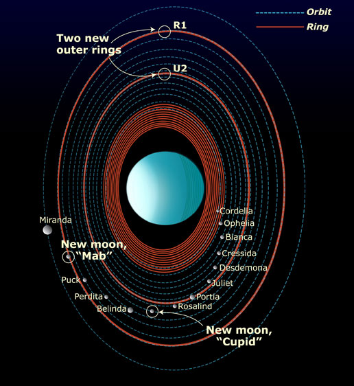 Rings, Orbits and Moons of Uranus Image