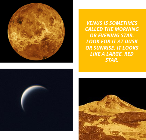 Venus Fun Facts