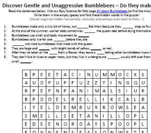 Download the FREE Bumblebees Worksheet for Kids