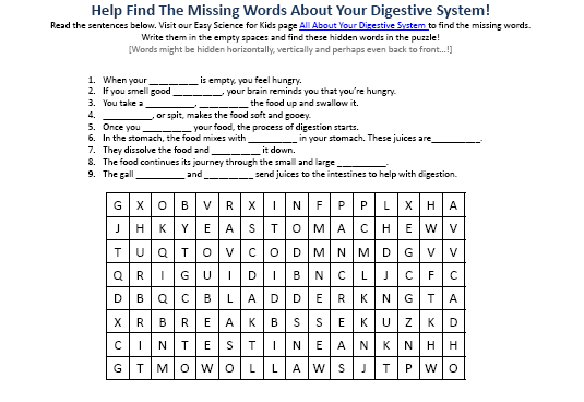 Collection of Digestive System Worksheets Sharebrowse – Digestion Worksheet