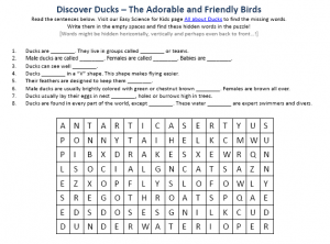 Download the FREE Duck Birds Worksheet!