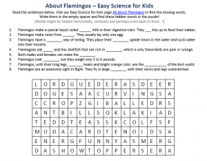 download the free flamingos activity sheet for kids