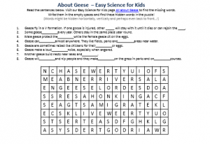 Download the FREE Geese Activity Sheet Word Search Game!