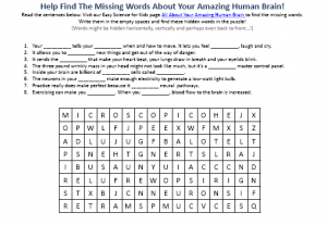 Human Brain Free To Print Easy Science Hidden Words Activity Sheet