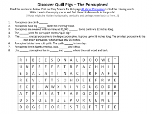 Download the FREE Porcupines Worksheet for Kids!