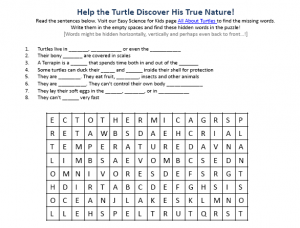 Download the FREE Turtles Worksheet for Kids