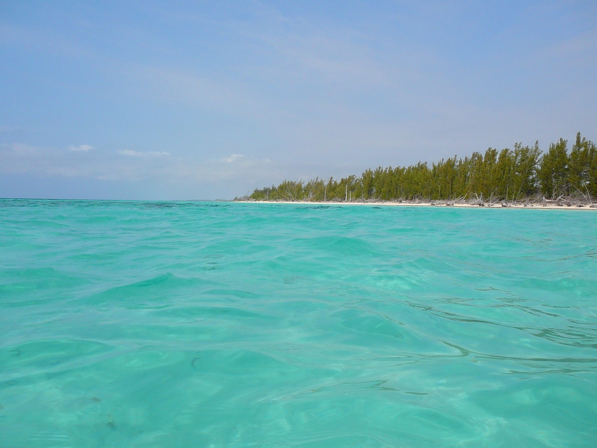 Interesting Facts About Grand Cayman Islands