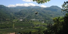 All about Costa Rica Fun Facts for Kids - Coffee plantation in Orosi Valley, Costa Rica - Costa Rica Worksheet