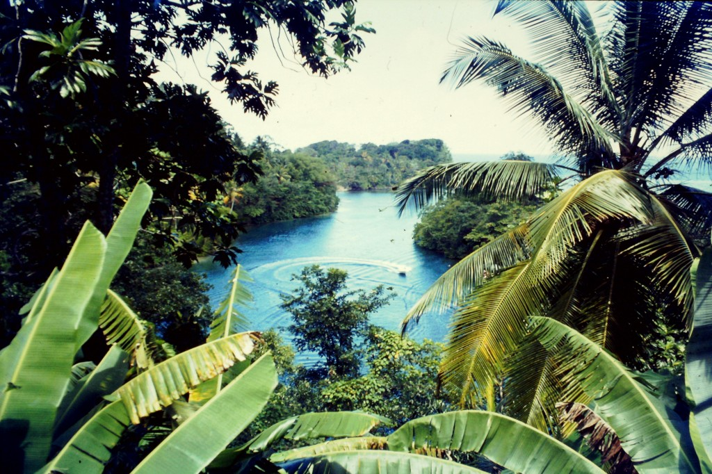 All about Jamaica Fun Earth Science Facts for Kids - Image of the Jamaican Beach