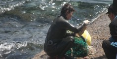 All about Korean Mermaids Fun Facts for Kids - an Image of a Korean Mermaid Trading After Diving in Jeju