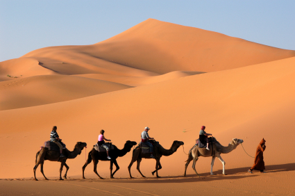 All about Morocco for Kids - Image of People Riding Camels in the Desert