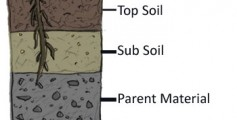 All about What's in Soil Easy Science for Kids - the Layers of Soil