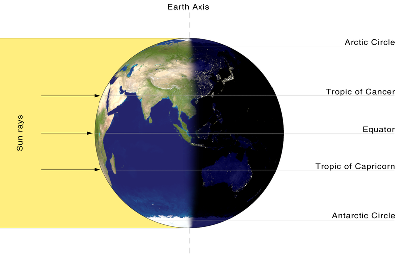 All about the Four Seasons Fun Science Facts for Kids - the Four Seasons Equinox