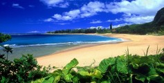 Earth Science Fun Facts for Kids All About Tropical Climates - Hawaii Beach an Example of a Tropical Rainforest Climate - Tropical Climates Worksheet