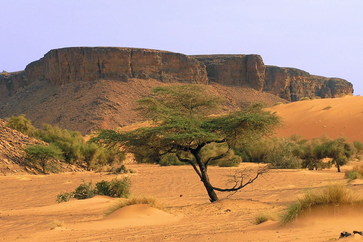 Easy Geography for Kids on Mauritania - Image of a Mauritanian Arid Land - Mauritania Quiz