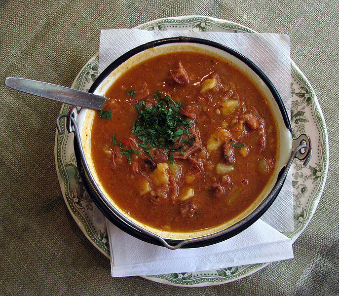 Easy Kids Science Facts on Hungarian Goulash - image of the Hungarian Goulash Soup - Hungarian Goulash Quiz
