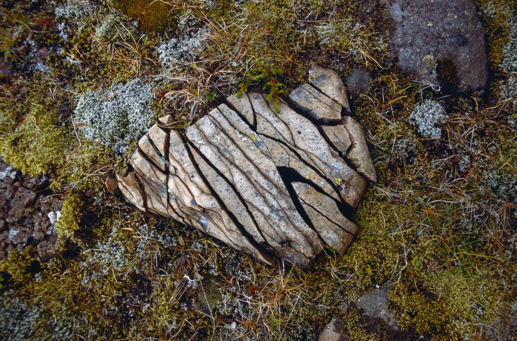 Easy Kids Science Facts on Weathering of Rock Image