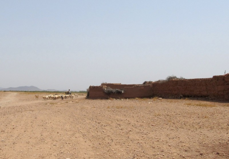 Easy Science for Kids on Dry Climate - Image of a Dry Land caused by a Dry Climate