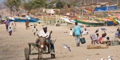 Fun Earth Science Facts for Kids on Gambia - Image of a Gambian Beach - Gambia Quiz