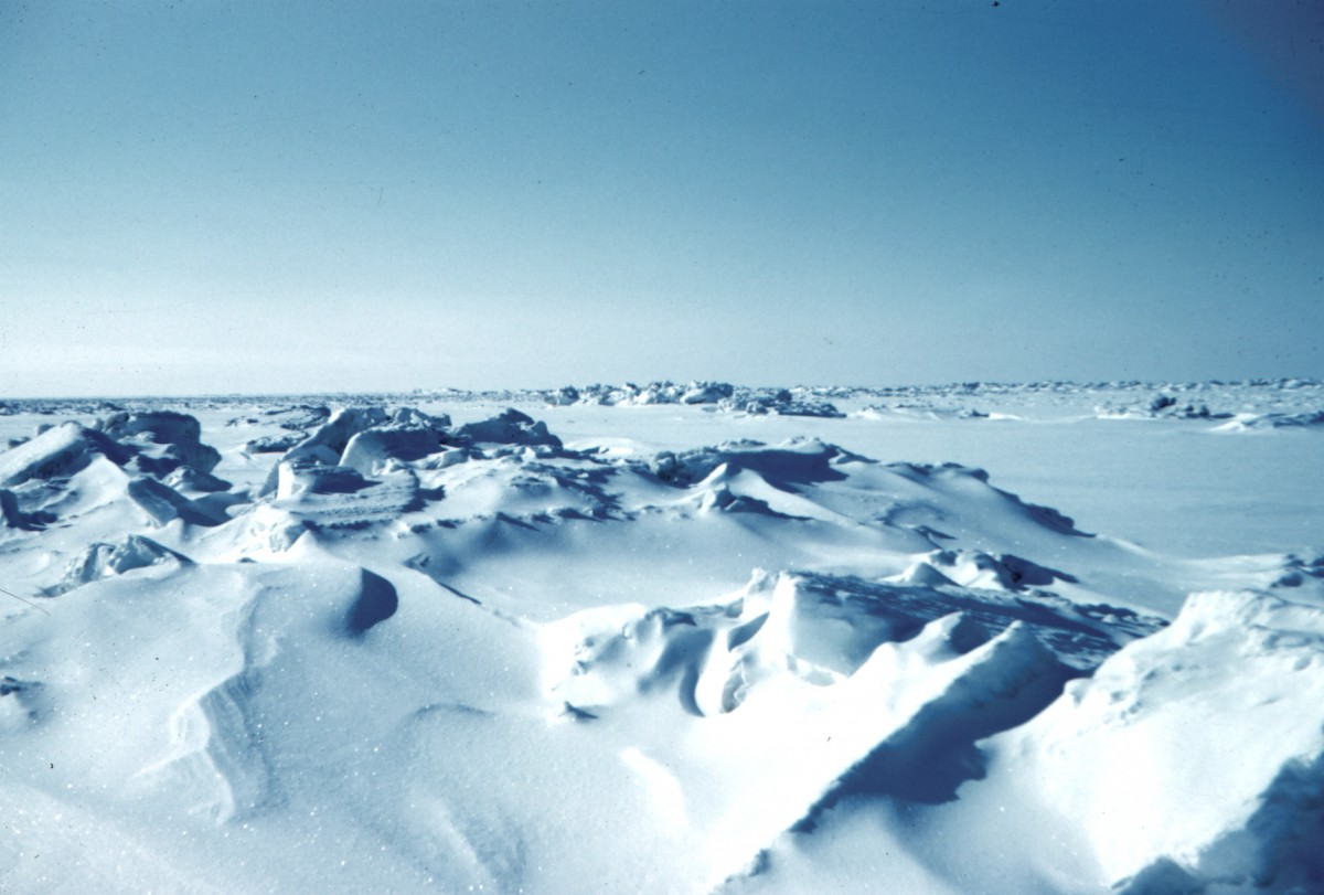 Fun Earth Science Facts for Kids on Ice Age - Image of the Sea Ice During Ice Age - Ice Age Worksheet