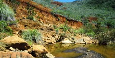 Fun Facts for Kids on New Caledonia - Image of a River in New Caledonia - New Caledonia Worksheet