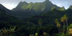 Fun Kids Science Facts on Cook Islands - Image of a Landscape in Cook Islands - Cook Islands Worksheet