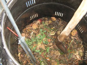 Fun Kids Science Facts All About Healthy Soil - an Example of Composting for Healthy Soil
