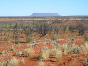 Science for Kids Website All about Australia - Image of an Australian Outback