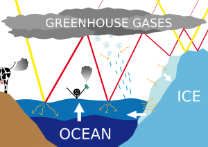 Science for Kids Website on Climate Change - Diagram of Rising Sea Levels Caused by Climate Change image