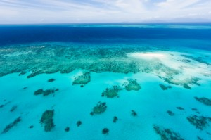 Easy Science for Kids at Home All about Australia - Image of the Coral Reefs of Australia