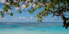 Fun Facts for Kids All about New Caledonia - Image of the Coast in New Caledonia