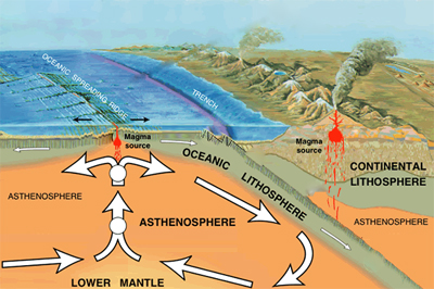Tectonic Plates Quiz - Diagram of the Movement of the Earth image