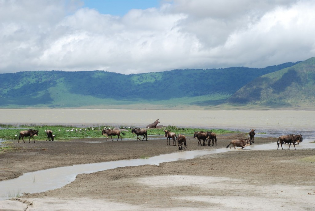 Fun Science for Kids all about the Natural Wonders of the World - Image of the Ngorongoro Crater in Tanzania