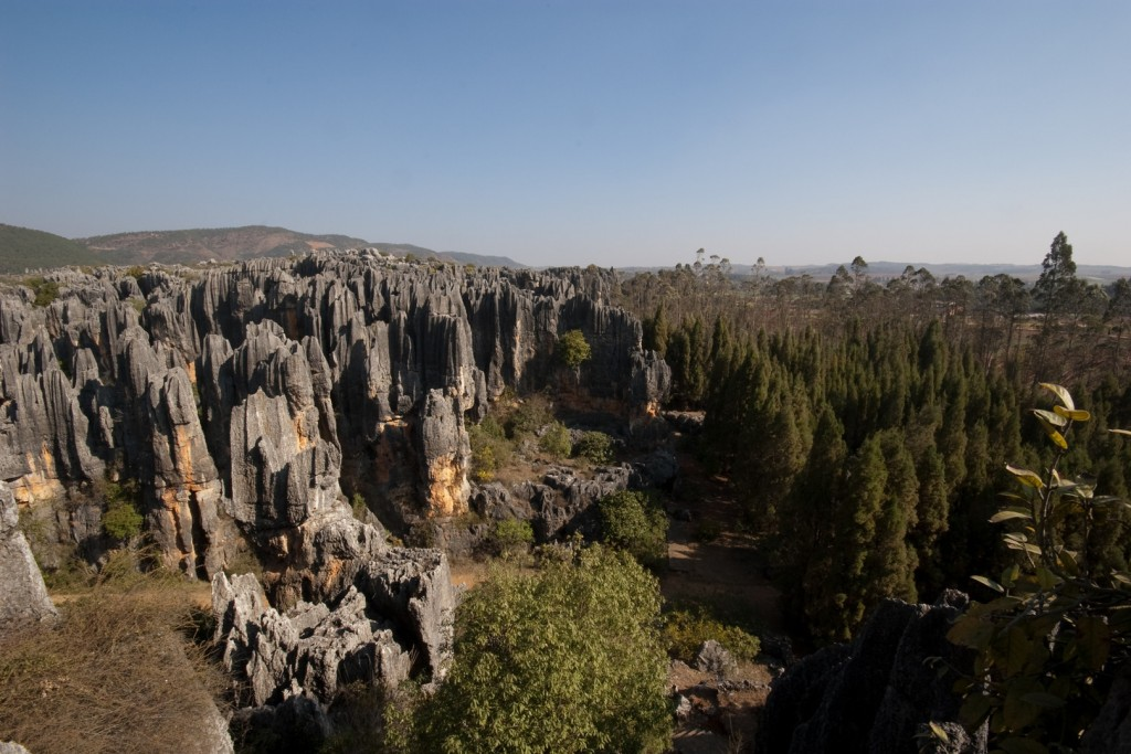 Geography Fun Facts for Kids on the Natural Wonders of the World - Image of the Shilin Stone Forest in China