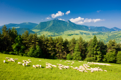 Kids Science Fun Facts on Slovakia - Image of a Landscape in Slovakia - Slovakia Quiz