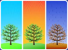 Seasons of the Year image