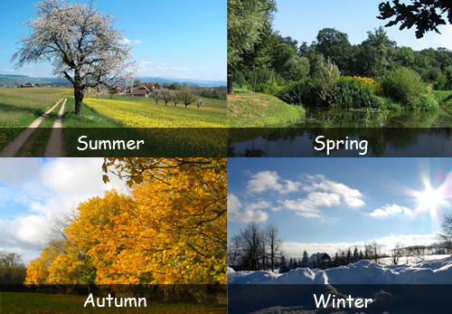 Types Of Seasons Fun Facts For Kids